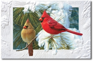 This sample Christmas card from cardinalchristmascards.com is a good example of the way Christmas cards often depict this beautiful bird.