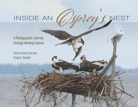 osprey-book-Cover