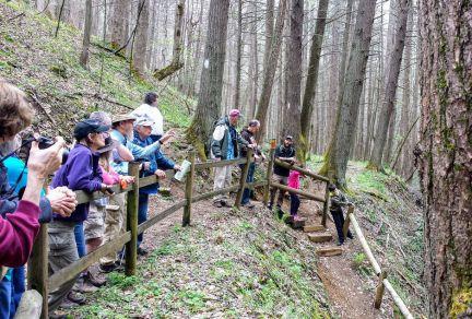 Geology Field Trip on Peg Leg Mine Trail (1) 2